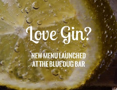 New Gin Menu launched in The Blue Dug Bar at Barony Castle
